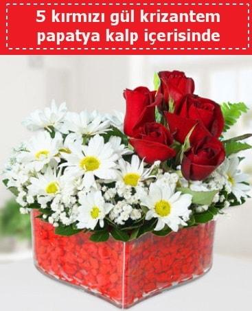 mika kalp içerisinde 5 kırmızı gül papatya  Ordu çiçek gönderme sitemiz güvenlidir