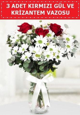 3 kırmızı gül ve camda krizantem çiçekleri  Ordu çiçek gönderme sitemiz güvenlidir