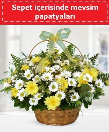 Sepet içerisinde mevsim papatyaları  Ordu çiçek satışı