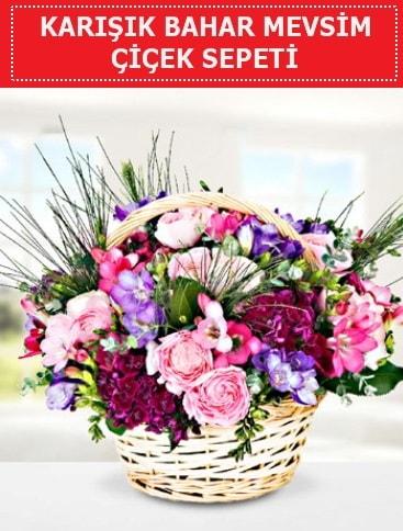 Karışık mevsim bahar çiçekleri  Ordu çiçek satışı