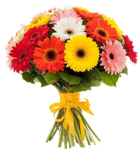 Gerbera demeti buketi  Ordu çiçek gönderme