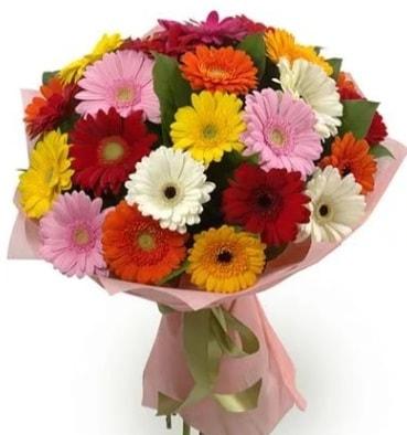 Karışık büyük boy gerbera çiçek buketi  Ordu çiçek gönderme