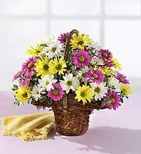 Ordu çiçek siparişi sitesi  Mevsim çiçekleri sepeti